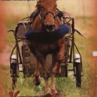 Korpilahtelainen kylälehti Vespuolinen 2001_joulu.pdf