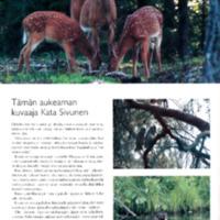 Luontokuvia