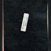 Korpisotaa. Osa käsikirjoituksesta elokuu 1940<br /> Kala. Käsikirjoitus elokuu 1940<br /> Luonnostelua elo-syyskuu 1940