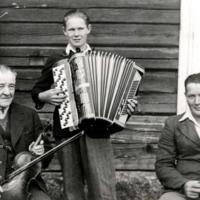 Mikko, Jussi ja Olli Haanpää