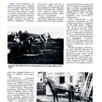 Näkökulma Huittisten hevostalouteen 1940-luvulle saakka
