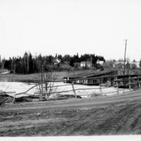 Tulva 3.jpg