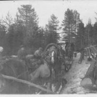 Puita kuljetetaan Laidinmäen mäkituvan rakentamista varten vuonna 1928