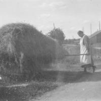 Mies ja nainen kantamassa heiniä Vanhahongolle