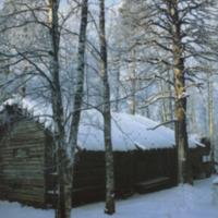 Jalasjärven joulu 1993