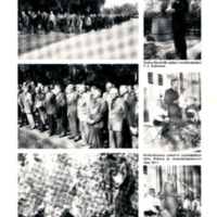 Veteraanit kunnioittivat kaatuneita aseveljiään 22.8.1981 kunniakäynnillä Huittisten Sankarihaudalla ja muistojen tilaisuudessa Huhkolinnassa