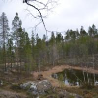 http://digi.kirjastot.fi/repository/27.5.2014-049.jpg