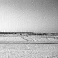 1991-02-006.jpg