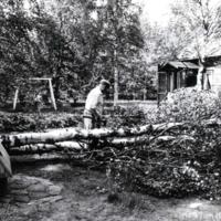 Pentti Haanpää puunkaadossa Korpelaisessa