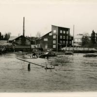 Tulva 2.jpg