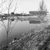 Hirvijoki 1.jpg