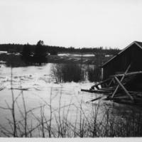 Tulva 9.jpg
