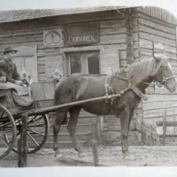 hevoskärry1.jpg