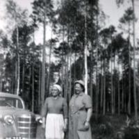 http://arkisto.kirjastovirma.fi/files/original/7e5a40097e4287e98029916a26b19bb3.jpg