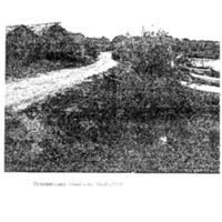 kuulumiset1979-2.pdf