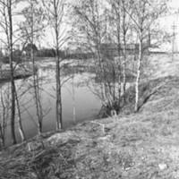 Hirvijoki 2.jpg
