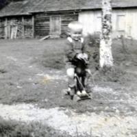 TeuvoMakelaPuuhevonen1.jpg