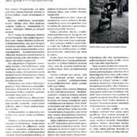 Runoilijan sadetta - Scriptum-muisteloita