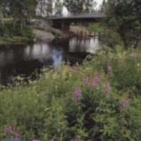 Jalasjärven joulu 2018.pdf