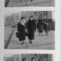 Fuksit1937.jpg