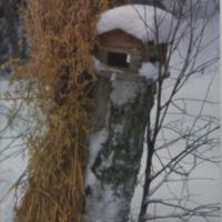 Jalasjärven joulu 1994