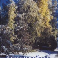 Jalasjärven joulu 2005