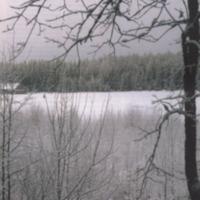 Koskelainen 2003