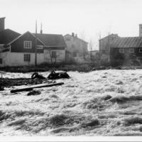 Tulva 6.jpg