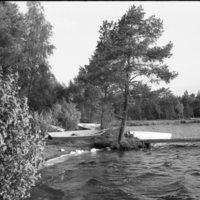1992-31-017.jpg