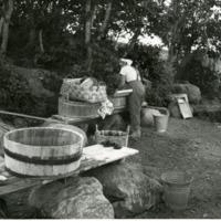 Pyykinpesua Mallusjärven rannassa kesällä 1958