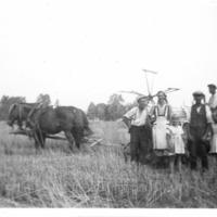 Ryhmäkuva hevosvetoisen itsesitojan edessä pellolla