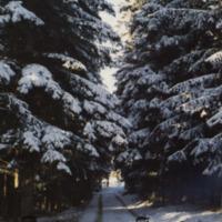 Jalasjärven joulu 1986