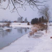 Koskelainen 2005