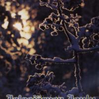 Jalasjärven joulu 2001