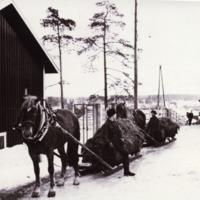 Talvisia miesten töitä Orimattilan kotitalousopistolla 1960-luvulla