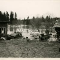 Tulva 1.jpg