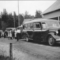 Viisi linja-autoa