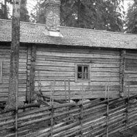 1984-11-019.jpg