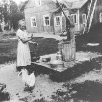 Tytär Saimi Pukara ruokkii kukkoa Pukaran talon pihassa