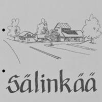 salinkaa_kylasuunn_1999.pdf